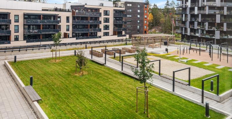 Myrvoll Stasjon er et nytt og flott nabolag i Nordre Follo mellom Kolbotn og Greverud med nærhet til det aller meste.