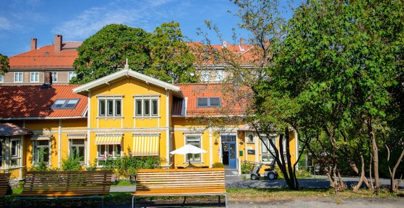 En rolig nabo i Frogner menighets hus, som eies og forvaltes av Frogner menighet
