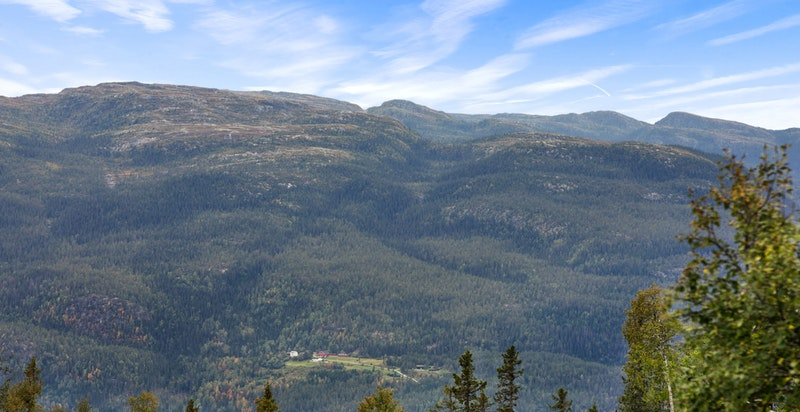 Utsikt fra terrasse