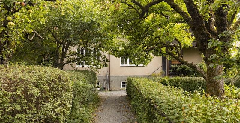 I Ullevål Hageby kan barna løpe fritt mellom de koselige hagene og de rolige internveiene.