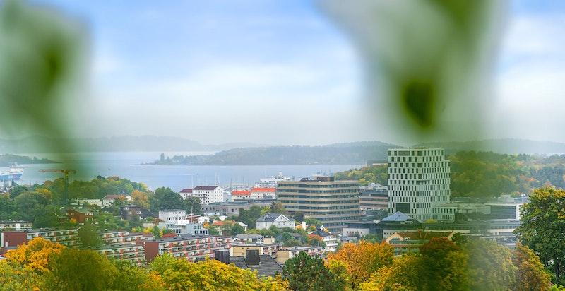 Fantastisk utsikt, blant annet mot Oslofjorden